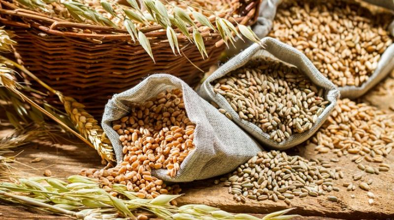 No change in foodgrain prices