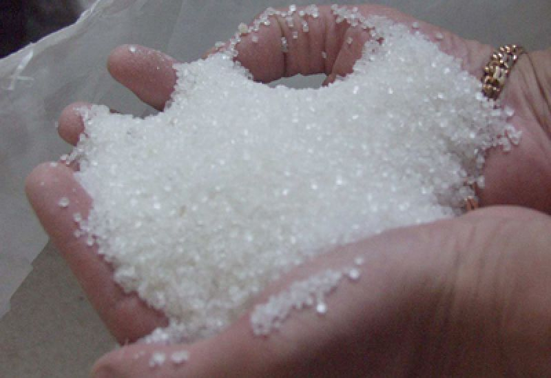 Medium sugar ruled steady in absence of any worthwhile buying activity