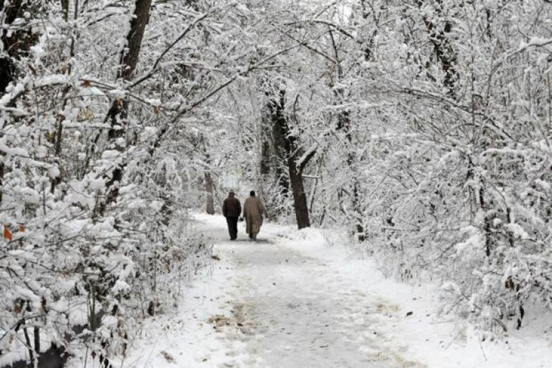 Gulmarg in north Kashmir recorded 29 cms of snow
