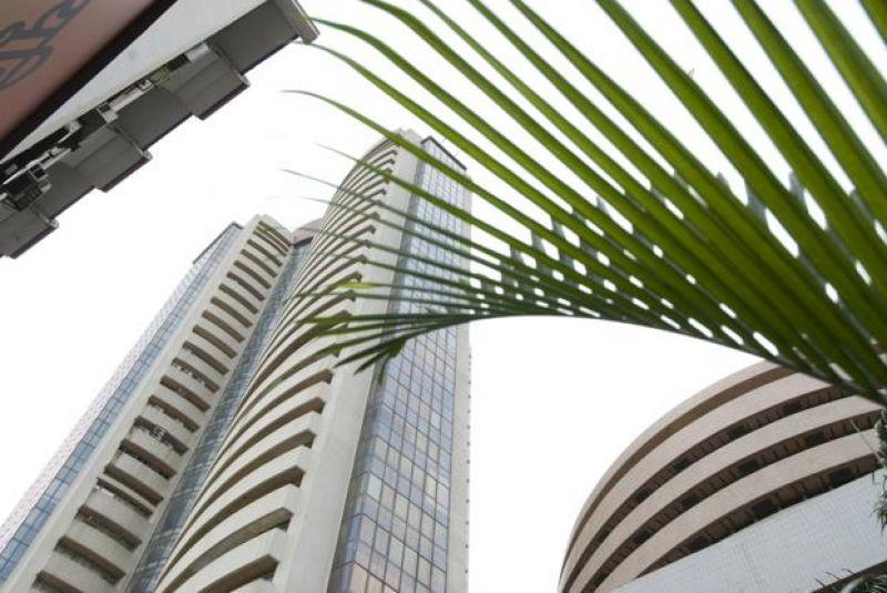 Domestic institutional investors